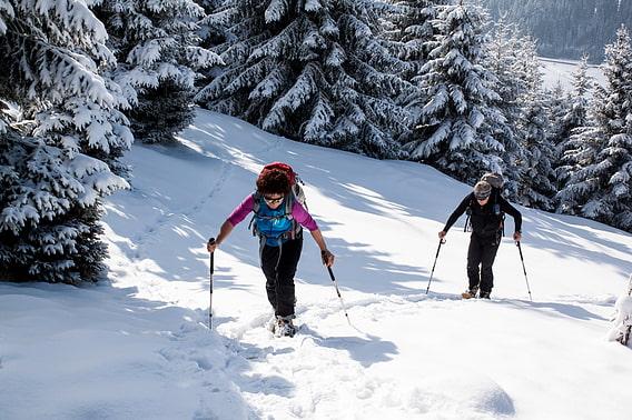 Klettergurt Leihen München : Ausrüstungsverleih alpenverein münchen oberland