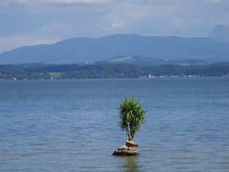Palmeninsel im Chiemsee